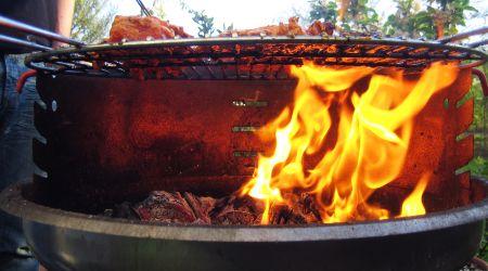 grillfest.jpg