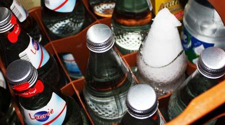 Leonie Mineralwasserflasche ist zerstört. Schuld: der Winter 2008/2009